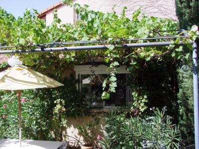 pergola de vigne